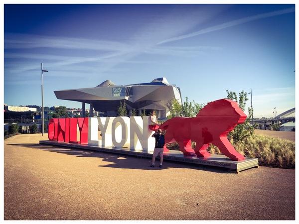 La Sculpture ONLYLYON Au Musee Des Confluences